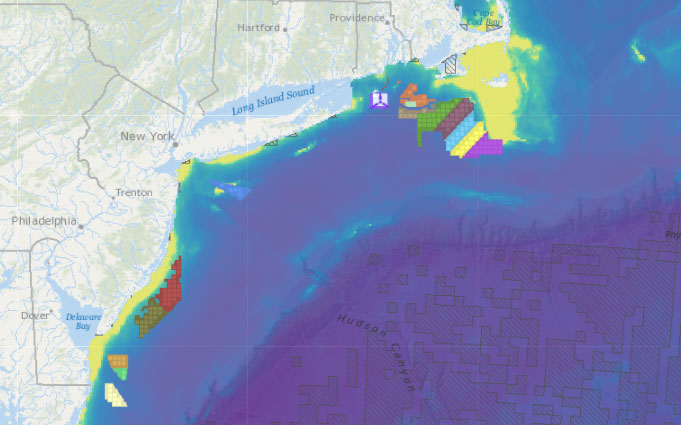 Offshore Wind Lease Areas, Operational Installations & Abundance of Birds with Higher Sensitivity to Displacement by Offshore Wind Farms