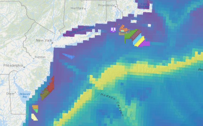 Offshore Wind Lease Areas, Operational Installations & Abundance of ESA-listed Whales