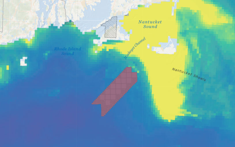 Vineyard Wind 1 Draft Environmental Impact Statement (DEIS) – Abundance of Birds with Higher Sensitivity to Collision with Offshore Wind Farms