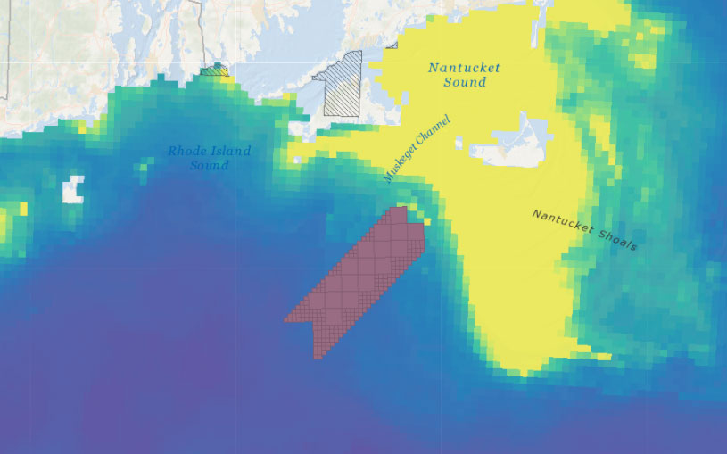 Vineyard Wind 1 Draft Environmental Impact Statement (DEIS) – Abundance of Birds with Higher Sensitivity to Displacement by Offshore Wind Farms